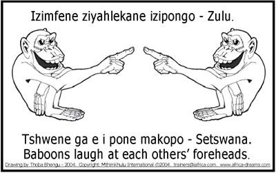 Cartoons_Baboons 7 2004