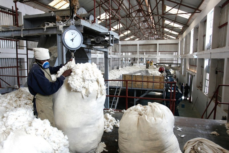 """Cotton Ginnery: One of Source of Credit to Famers  Reviving the """"White Gold"""""""