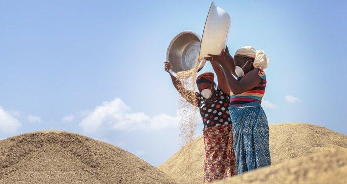Nigerian Women Preparing Grain (Photo Credit: Africa Report)