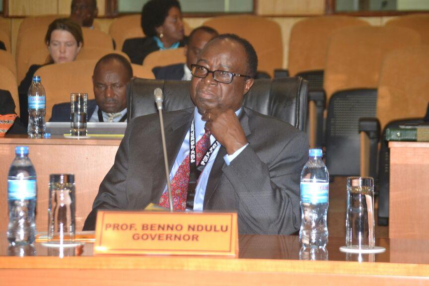 governor-ndulu